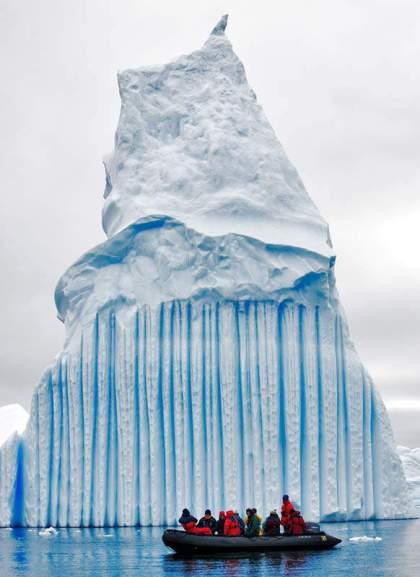 amazing antartica