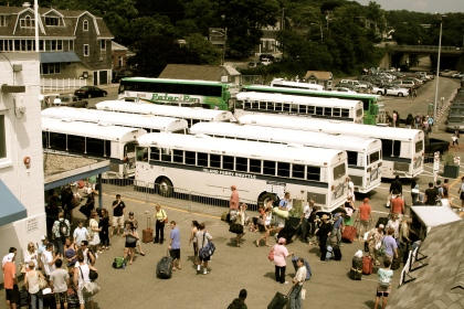 MV ferry buses